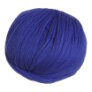 Cascade 220 Superwash - 0814 - Hyacinth