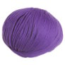 Cascade 220 Superwash - 0804 - Amethyst