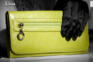 Namaste The Wallet - Lime