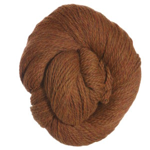 Cascade Eco+ Yarn - 2453 Pumpkin Spice (Discontinued)