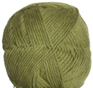 Brown Sheep Lamb's Pride Worsted Superwash Yarn - 190 - Cactus