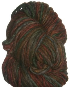 Brown Sheep Burlyspun Hand Paint Yarn - 350 Bountiful Harvest