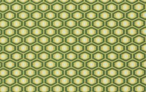 Amy Butler Midwest Modern Fabric - Honeycomb - Forest