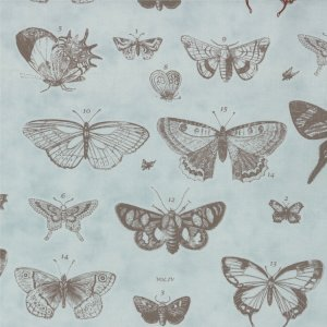 3 Sisters Papillon Fabric - Butterfly Etchings - Aqua  (4070 12)