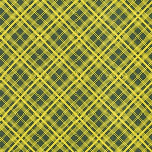 Denyse Schmidt Chicopee Fabric - Simple Plaid - Lime