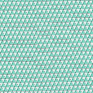 Cloud 9 Fabrics Monsterz Fabric - Mountainz - Mint