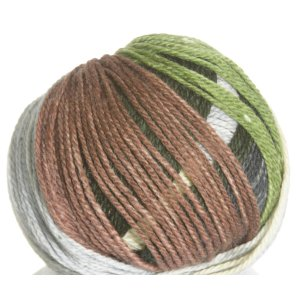 Schoeller Stahl Limbo Color Yarn - 2573 Ireland