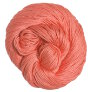 Tahki Cotton Classic Yarn - 3473 - Coral (Backordered)