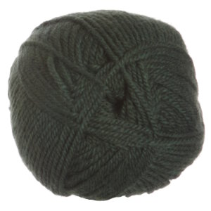 Plymouth Encore Worsted Yarn - 1233 Greenhouse