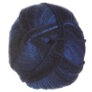 Plymouth Encore Worsted Colorspun Yarn - 7657 Blueberry Ombre