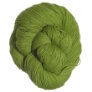 Shibui Knits Cima Yarn - 2024 Lime (Discontinued)