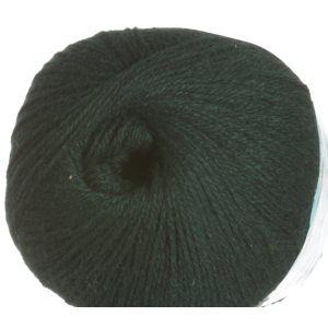Bijou Basin Ranch Seraphim Yarn - 10 Evergreen