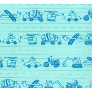 Tim and Beck Apple Jack Fabric - Doodles - Aqua (39512 12)