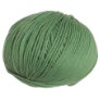 Cascade 220 Superwash - 0226 - Peppermint