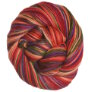 Misti Alpaca Hand Paint Sock - 46 Tilt A Whirl (Backordered)