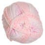 Plymouth Encore Worsted Colorspun Yarn - 7752 Sherbert Frost