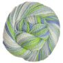 Cascade 128 Superwash Multis Yarn - 110 Baby Boy