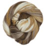 Cascade 220 Superwash Sport Multis Yarn - 107 Browns