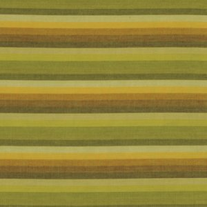 Kaffe Fassett Woven Stripe Fabric - Multi Stripe - Lime