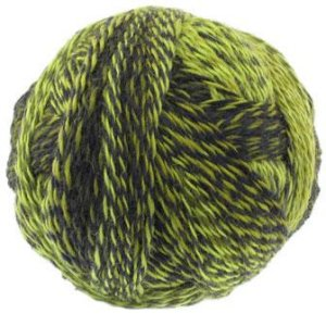 Schoppel Wolle Zauberball Crazy Yarn - 2081 (Discontinued)