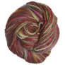 Manos Del Uruguay Wool Clasica Space-Dyed - 113 - Wildflowers