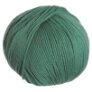Cascade 220 Superwash Yarn - 1985 - Duck Egg Blue
