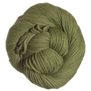 Blue Sky Fibers Worsted Hand Dyes Yarn - 2002 Green (Discontinued)