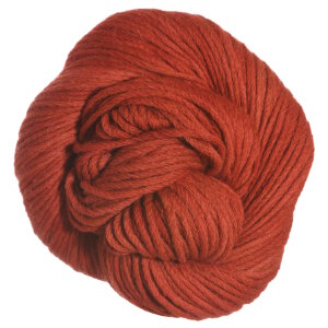 Blue Sky Fibers Worsted Hand Dyes Yarn - 2010 Rusty Orange