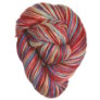 Madelinetosh Tosh Merino Light - 4th Exclusive - Americana Style