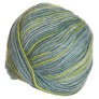 Zitron Patina Multi Yarn - 5501 Sea Glass