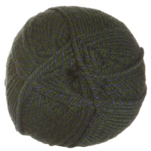 Plymouth Encore Worsted Colorspun Yarn - 7762 Green Plum