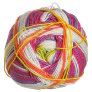 Plymouth Yarn Diversity - 0010 Fruity