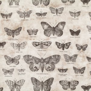 Tim Holtz Eclectic Elements Fabric - Butterfly - Taupe
