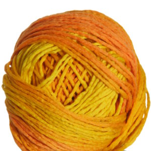 Schoppel Wolle Reggae Ombre Yarn - 1965 (Discontinued)