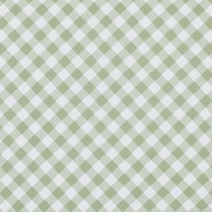 Tanya Whelan Sunshine Roses Fabric - Gingham - Green