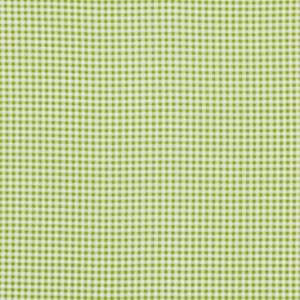 Jenean Morrison Wishing Well Fabric - Gingham - Green