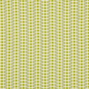 Jenean Morrison True Colors Fabric - Ribbon - Lime