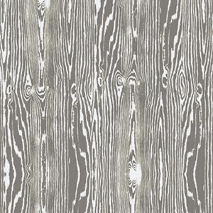 Joel Dewberry True Colors Fabric - Wood Grain - Gray