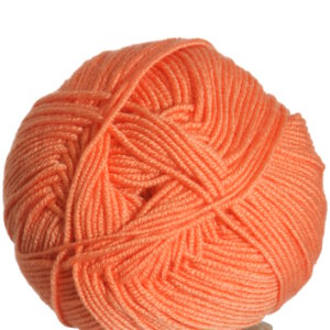Cascade Elysian Yarn - 22 Bird of Paradise (Discontinued)