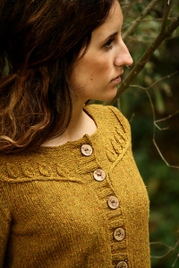 Cascade 220 Heathers Twigs and Willows Cardigan Kit - Women's Cardigans
