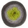 Freia Fine Handpaints Ombre Lace Yarn