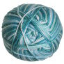 Cascade Cherub Aran Multis Yarn - 520 Tropical Sea