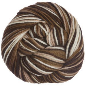 Cascade 220 Paints Yarn - 9724 - Brown Mix