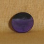 Muench Plastic Buttons - Groovy (Purple) - Small