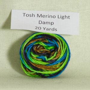 Madelinetosh Tosh Merino Light Samples Yarn - Damp