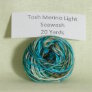 Madelinetosh Tosh Merino Light Samples Yarn - Seawash