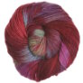 Malabrigo Worsted Merino Yarn - 633 - Colorinche