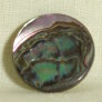 Muench Shell Buttons - South African Abalone (22mm)