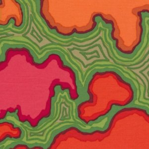 Kaffe Fassett Map Fabric - Red