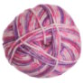 Plymouth Encore Worsted Colorspun - 7517 Razzle Print